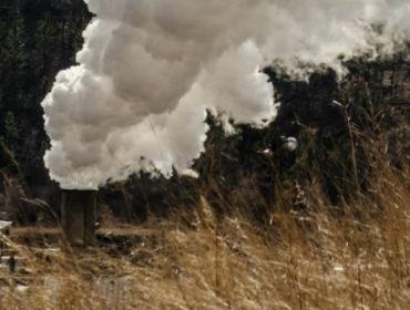 Przyczyny smogu - kampania społeczna dotycząca problemu spalania odpadów