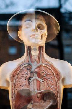 Niedobór magnezu może mieć wpływ na cały organizm