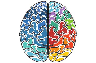 Niedobór magnezu nie wpływa dobrze na układ nerwowy